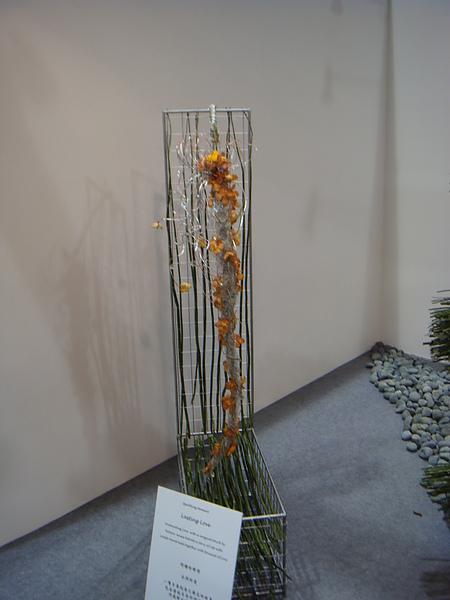 2011-洲際盃花藝大賽 (48).JPG