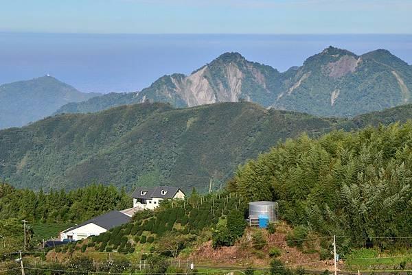 20130919頂石棹茶園 (9).jpg