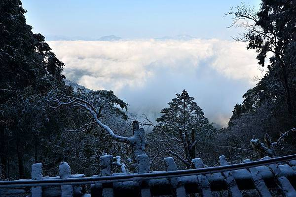 太平山見晴步道 (13).JPG