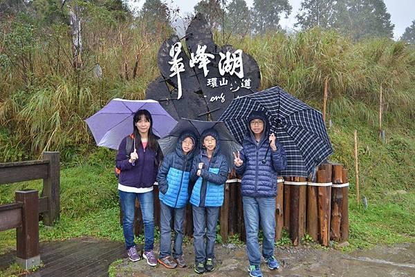 山毛櫸步道 (11)