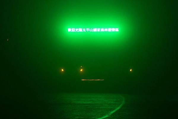 山毛櫸步道 (28)