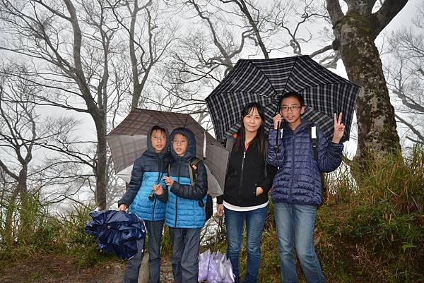 山毛櫸步道 (34)
