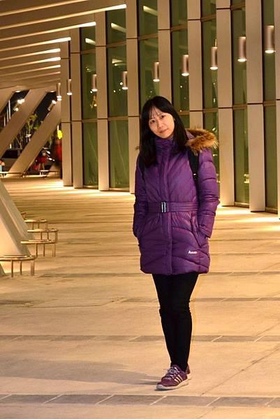 雲林高鐵站 (3)