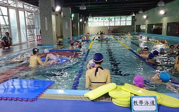 泳池戲水 (3)
