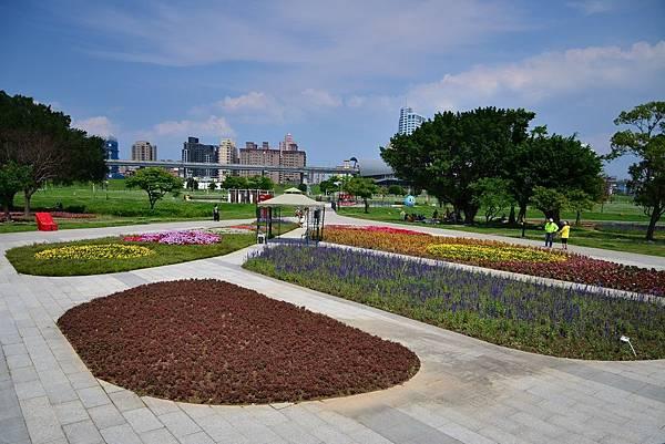 水漾公園花海 (2)
