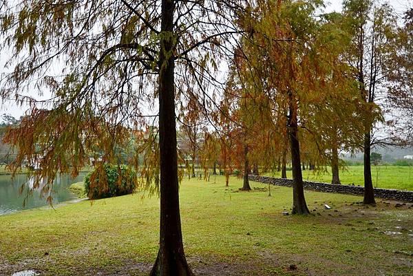 福園蜊埤湖 (3)
