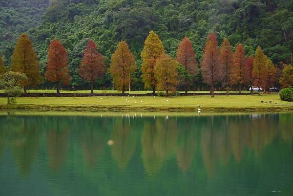 福園蜊埤湖 (5)