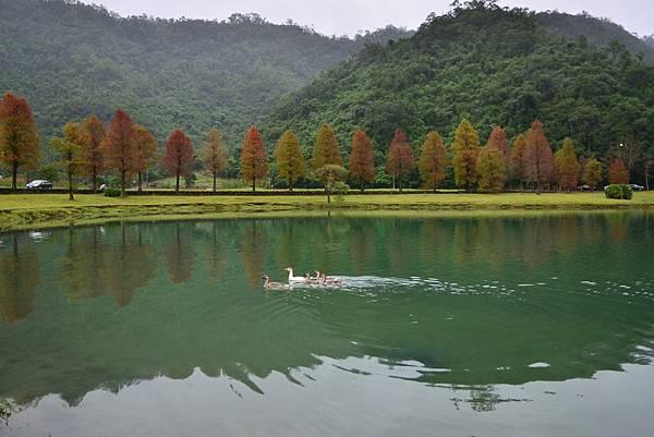 福園蜊埤湖 (8)