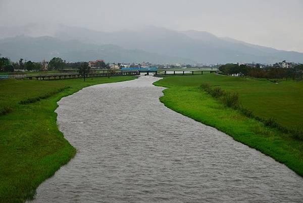 安農溪落雨松 (11)