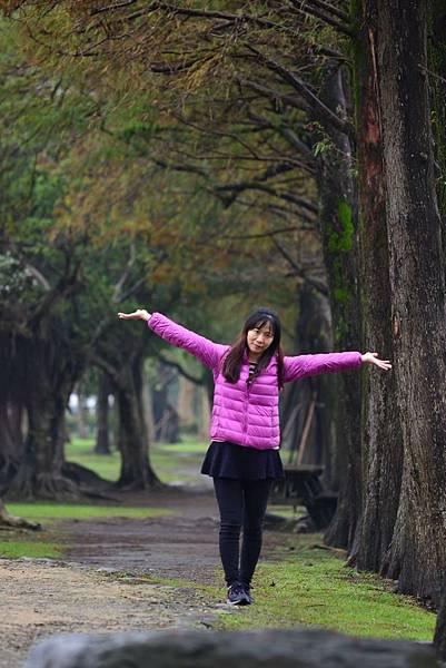 羅東運動公園落羽松  (10)