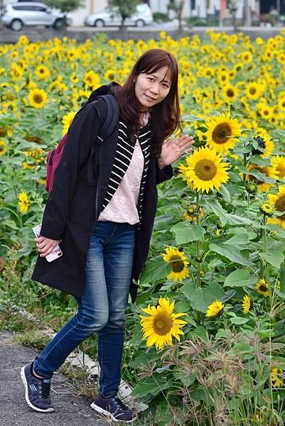 孩沙里花海 (14)