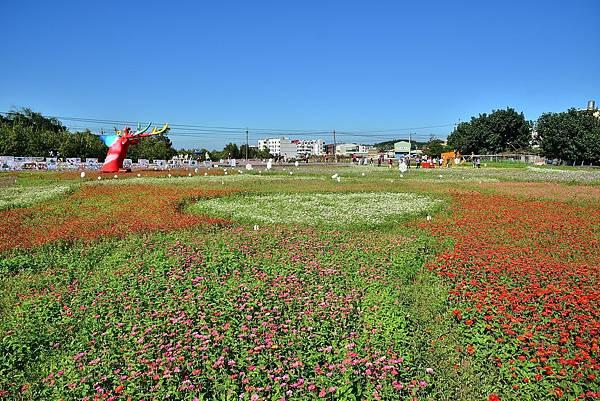 2018蘆竹花海 (1).jpg