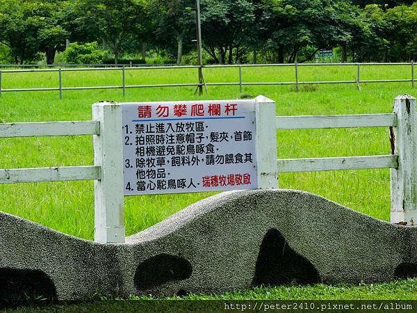 風吹草低見牛羊 (11).jpg