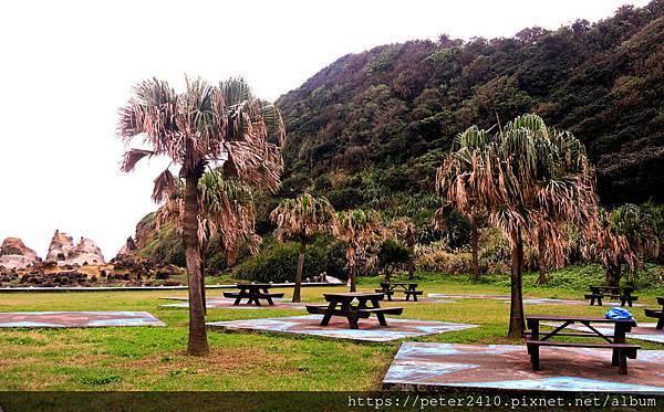 和平島地質公園 (37).jpg