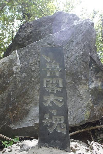 DSC04580魯閣太魂.jpg