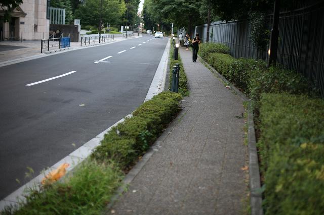 上野 (28).jpg