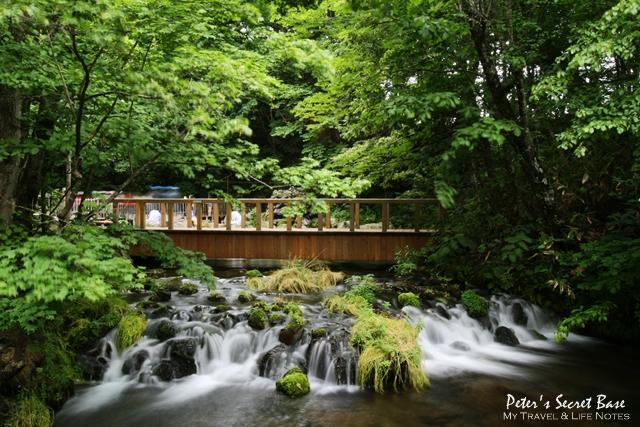 羊蹄山名水公園 (4).JPG