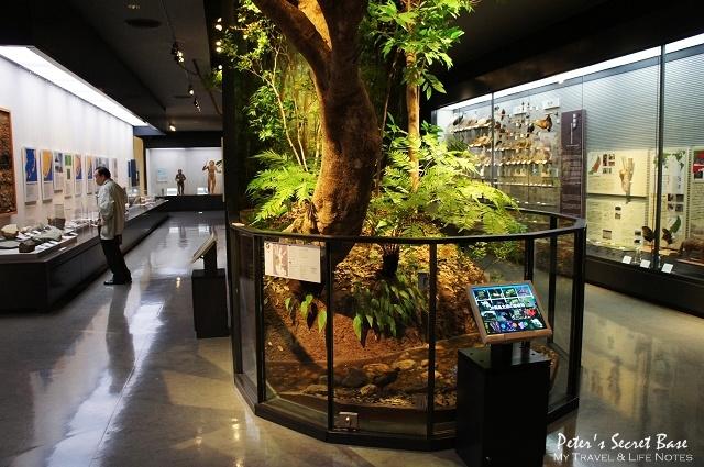 沖繩博物館 (16)