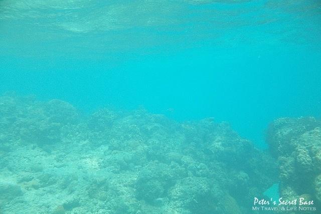 水中相機 (8)