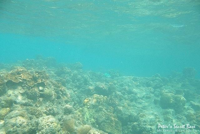 水中相機 (11)