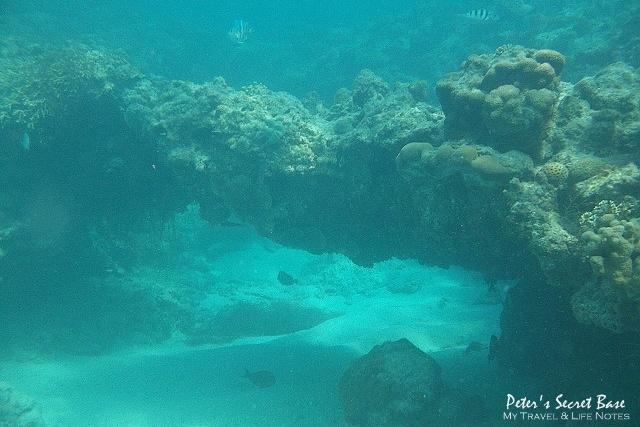 水中相機 (15)