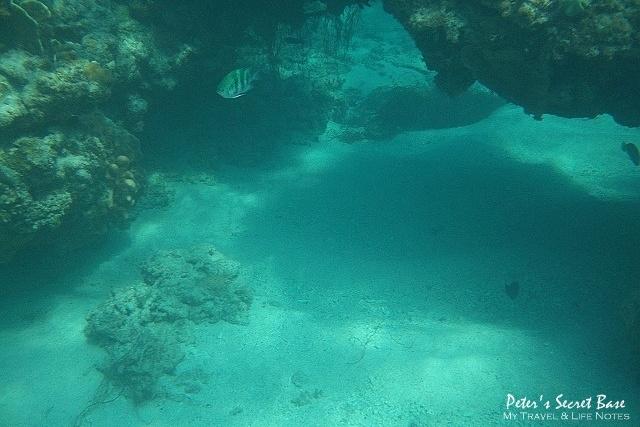 水中相機 (17)