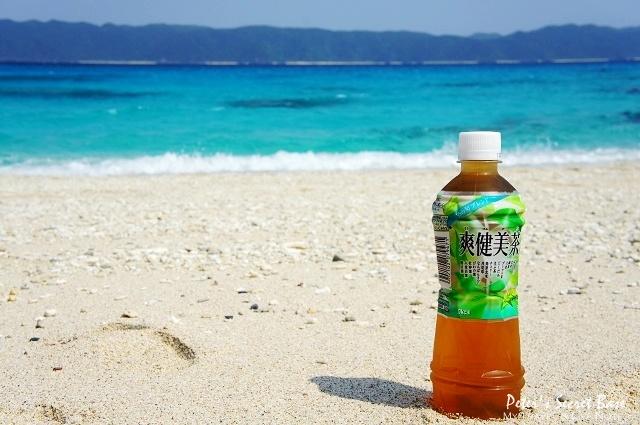 座間味海灘續章 (8)
