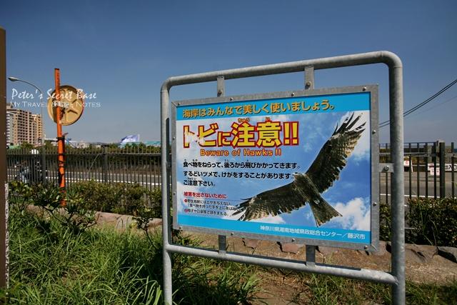 湘南海岸 (17)