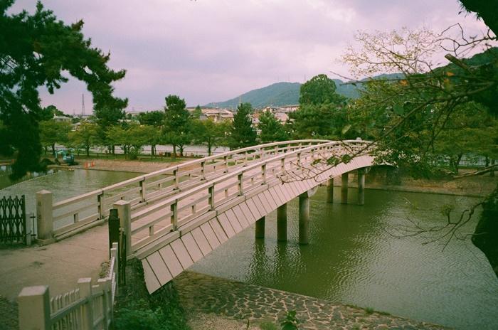 京都首日和宇治的閒晃 (6).jpg
