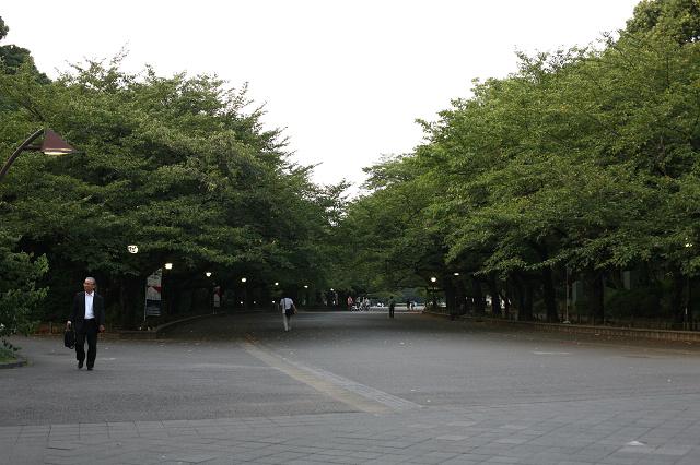 上野 (13).jpg