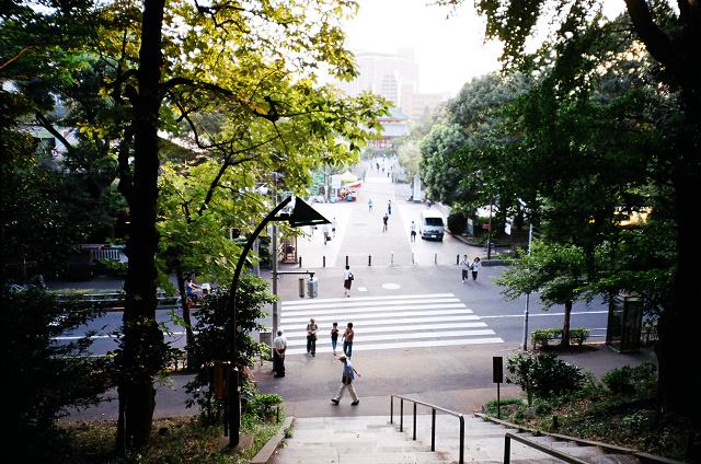 上野 (3).jpg