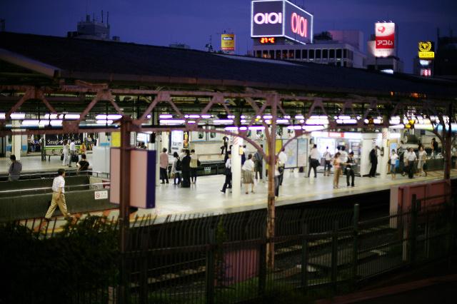 上野 (30).jpg