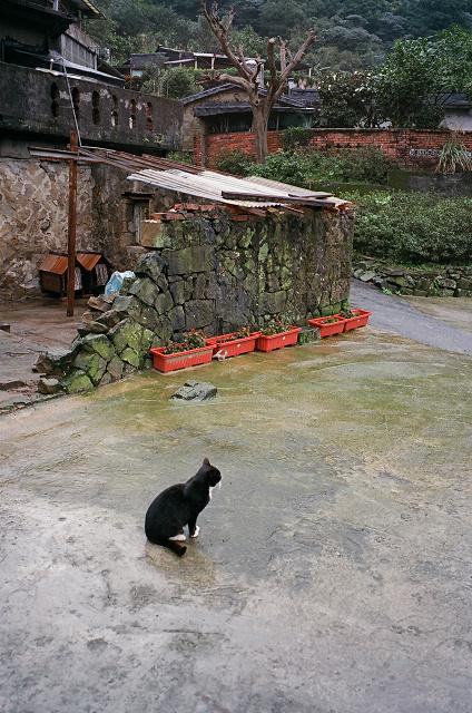 侯硐2009 (11).jpg