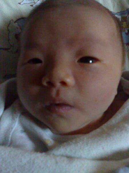 這像才出生第六天的小娃娃嗎?