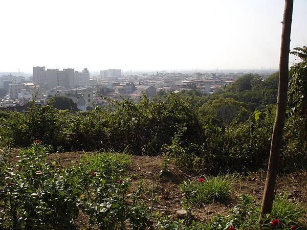 2014旗山天后宮旗鼓相當報馬盃全國馬拉松 (29).JPG