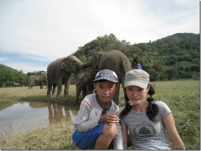 IMG_6302靜靜與象拍照