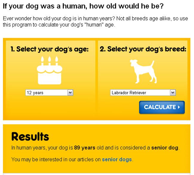 dog age3.jpg