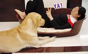 Ruby的寵物床床危機08.jpg