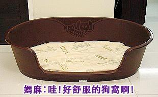 Ruby的寵物床床危機01.jpg