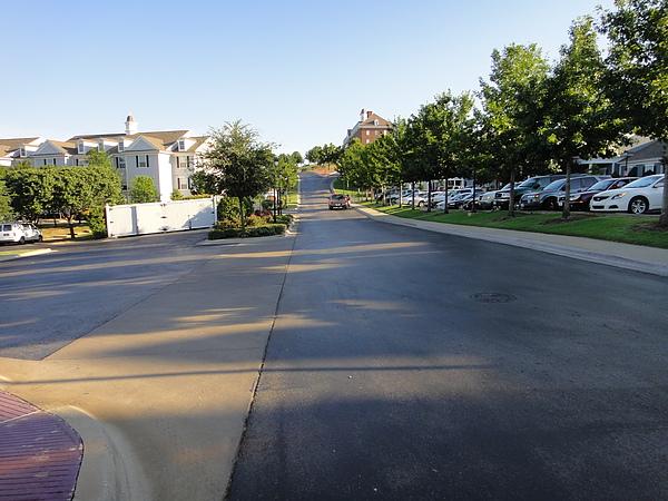 宿舍前面停了一大排車