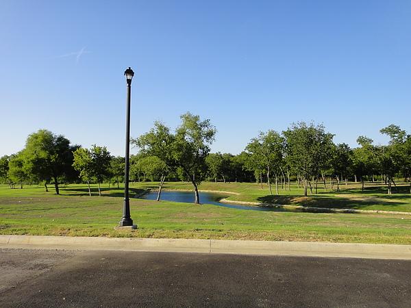 我家一出來會看到的小池塘