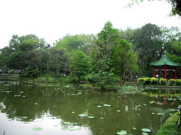 植物園004.jpg