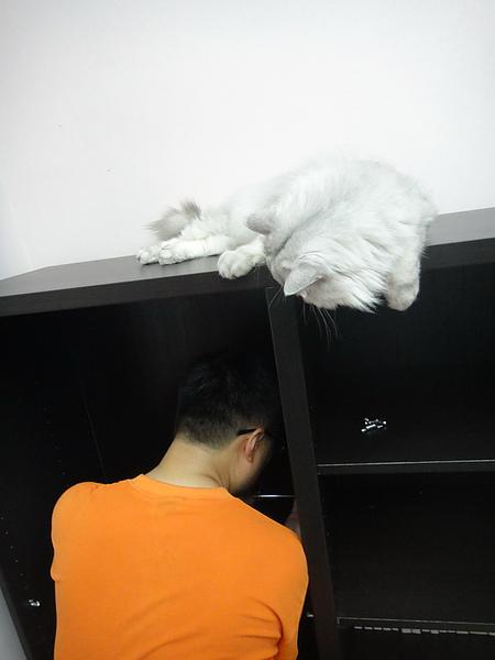 IKEA00029_調整大小.JPG