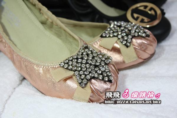 第二張鞋子.JPG