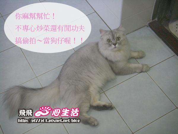 IMGP7812_鹹湯圓.JPG