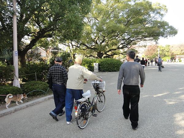 京都賞楓00648_調整大小.JPG