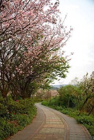 20150405_三芝_Canon_ 148