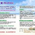 9606疥瘡(Scabies)  蘇郁仁.jpg