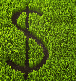 Economics_Green-Grass_300x320.jpg