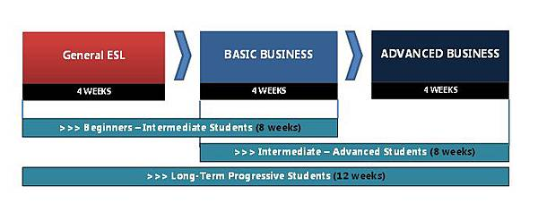 Bussiness learning path way